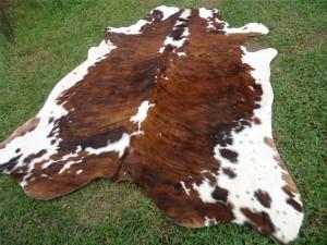 Cowhide brown white