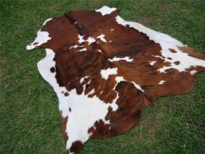 Cowhide 25% 75% Tricolor