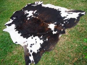Cowhide 50% Brown White