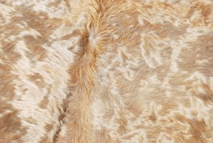Cowhide Skin Rug Natural Gold