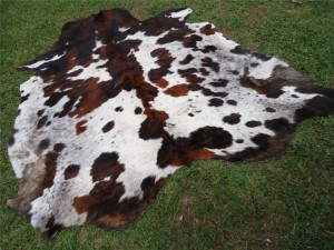 Cowhide  Tricolor Speckled