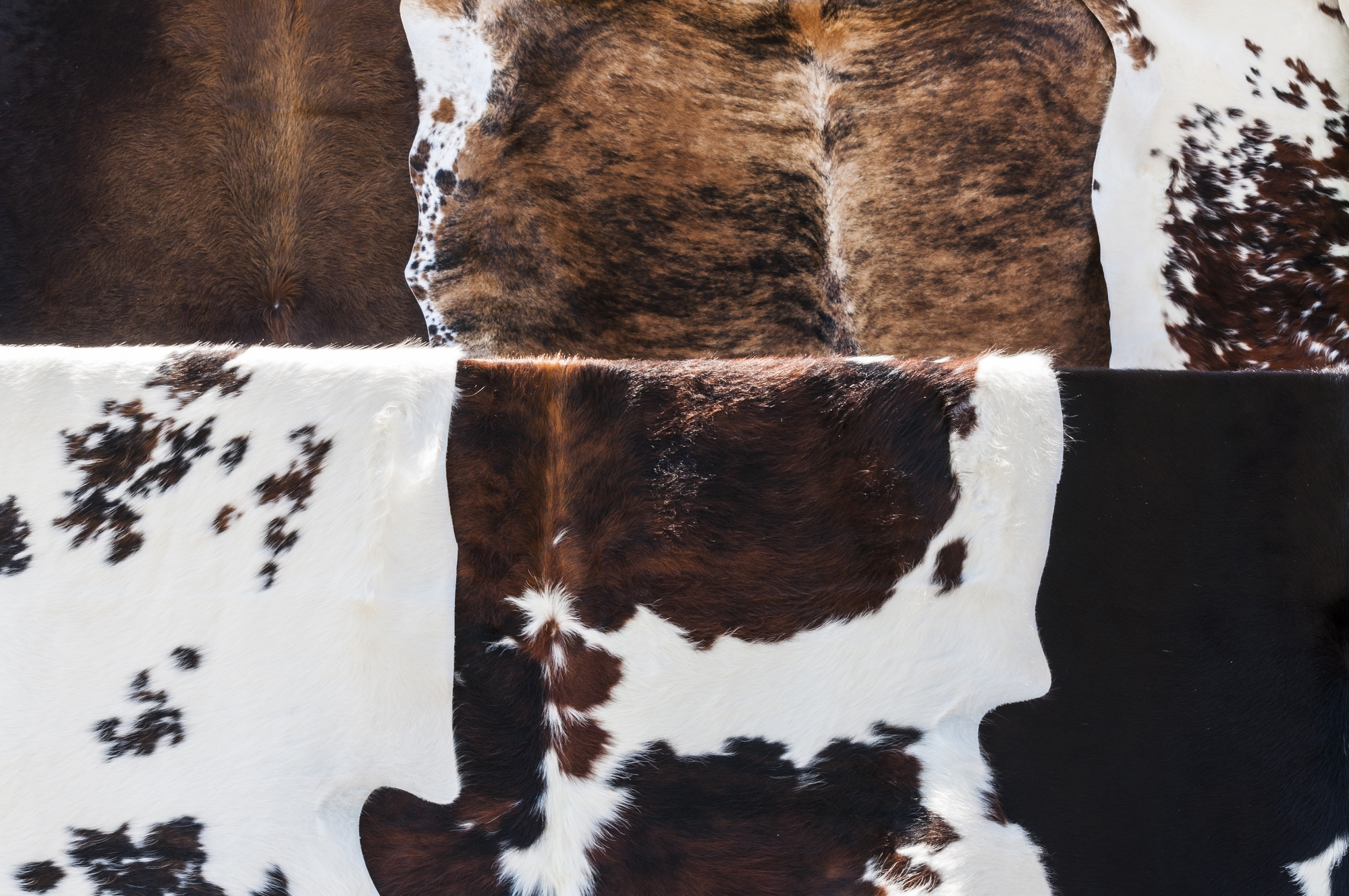 4 Smart Tips For Cleaning Cowhide Rug Cowhide Rug Tips